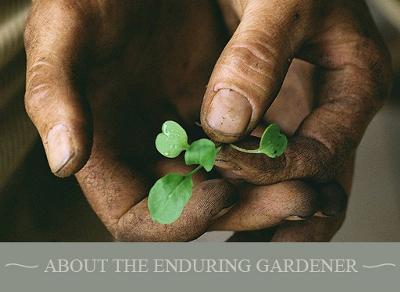 Gardening Courses from MyGardenSchool