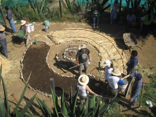 circular gardening beds